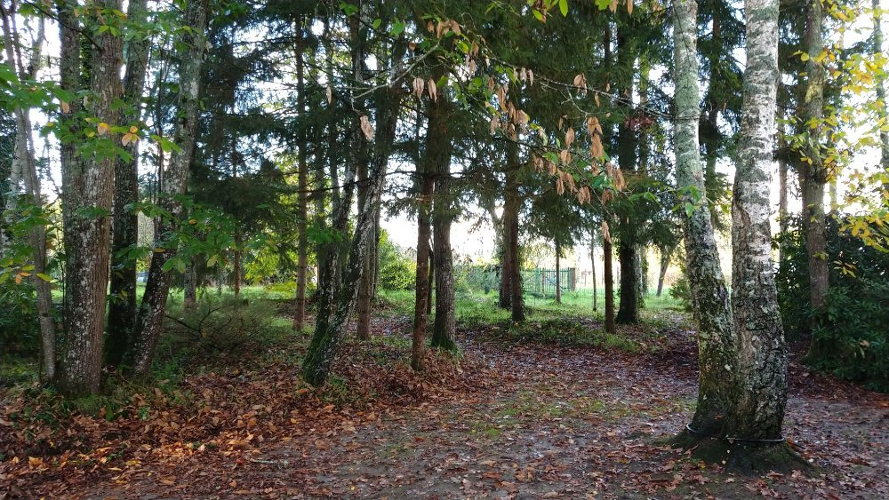 Aire camping-car à Viglain (45600) - Photo 5